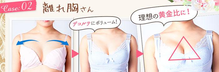エレアリーナイトブラは離れ乳も寄せる